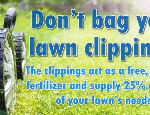 Don't Bag Your Yard Clippings!